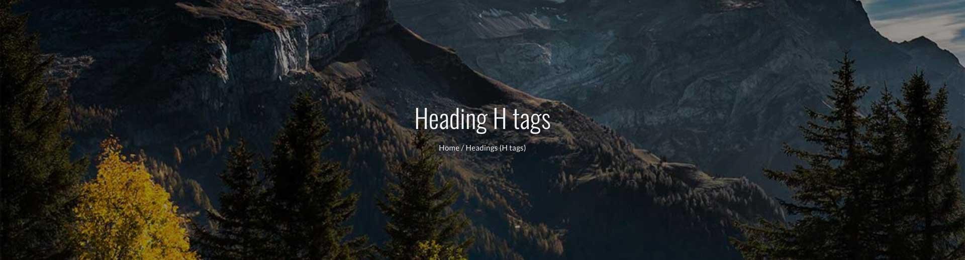page-header-breadcrumb